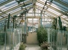 control greenhouse temperature