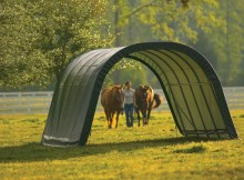 Protect Your Horses or Livestock with a Run-In Shed