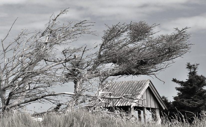 building in windy field