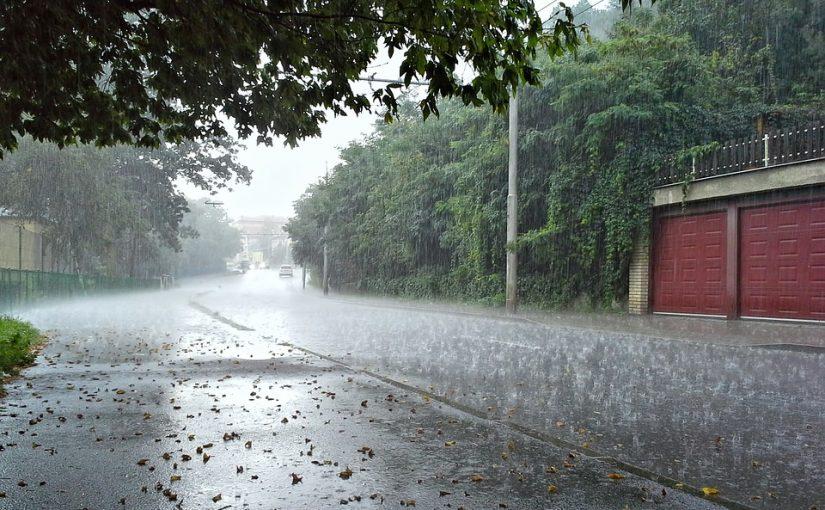 rainy yard