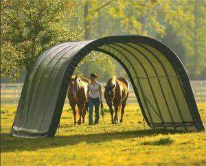 horses canopy